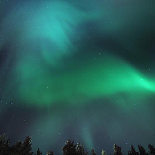 Escapade nature en famille à Rovaniemi