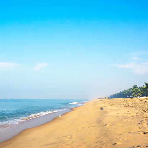 Merveilleux Kerala en famille