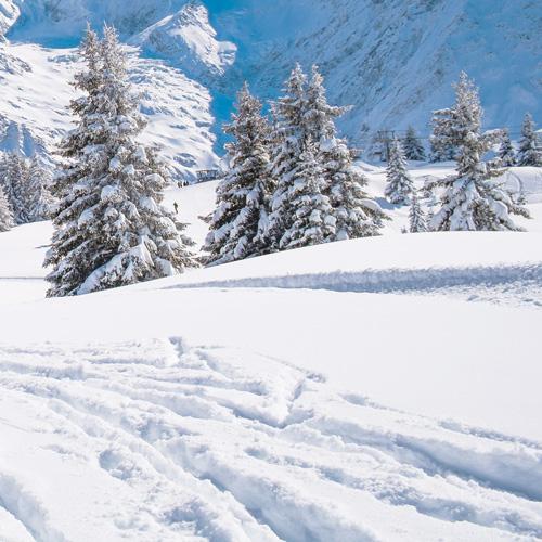 Ski à deux à Vaujany