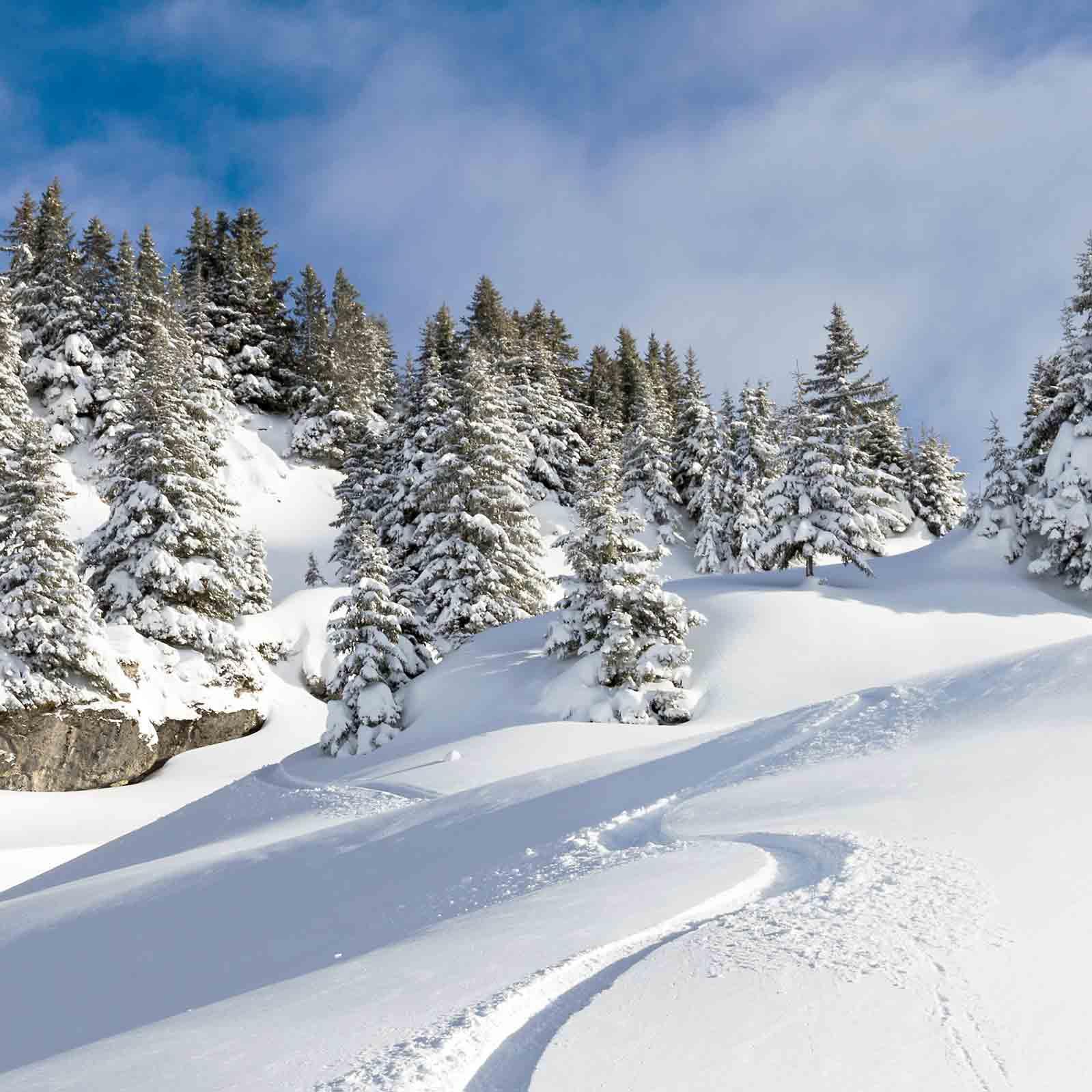 Ski entre amis à La Plagne