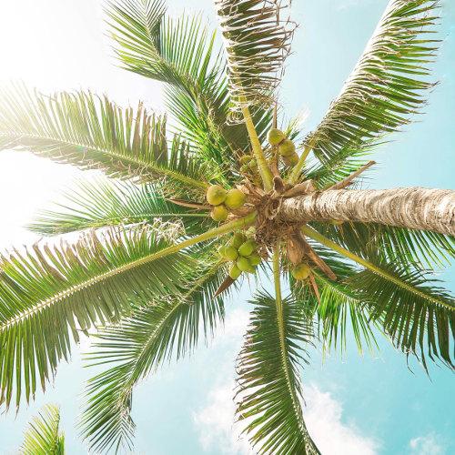 Découverte de Cancun à deux
