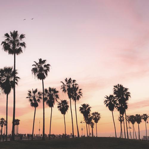 Aventure en famille en Californie