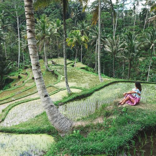 Aventures entre amis à Bali