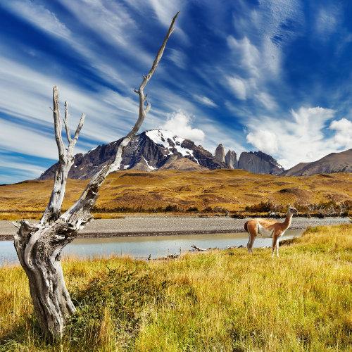 Aventures entre amis à San Carlos de Bariloche